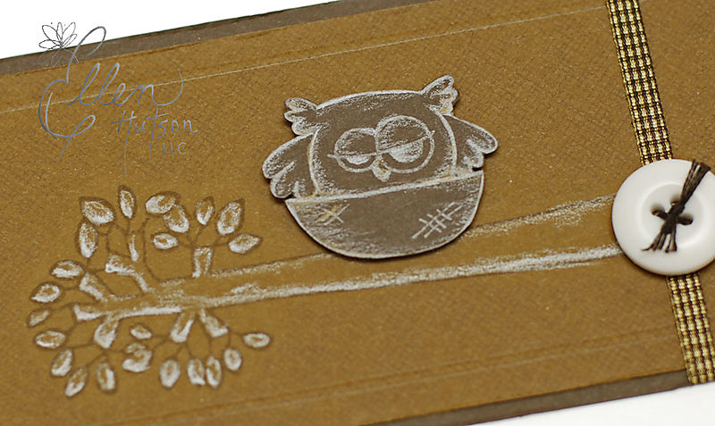 Wise Owl Closeup