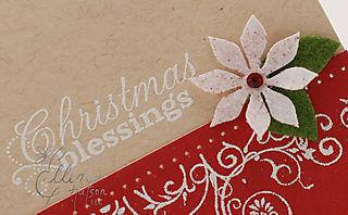 Christmas Blessings Poinsettia
