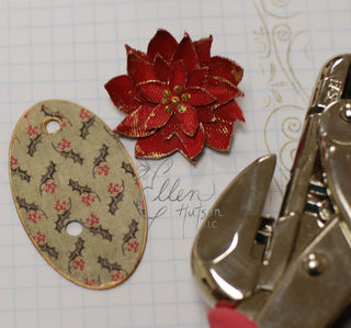 Poinsettia 13