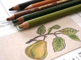 JKS-pear-coloring