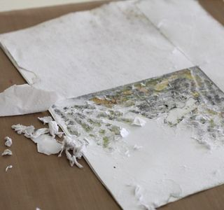 Peel off damp paper