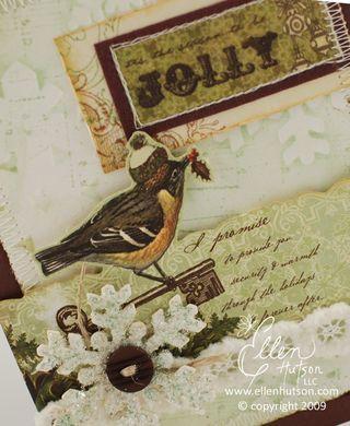 Webster's Bird Closeup