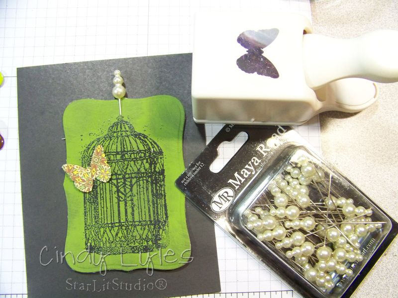 Butterfly cage card 9