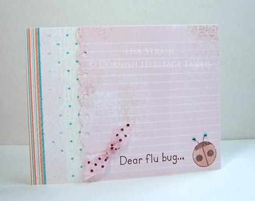 Dear Flu Bug