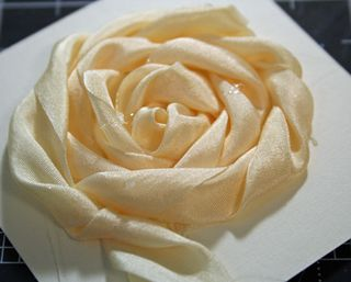 Full-size-rose