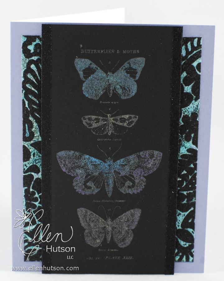 Tims Butterflies 2