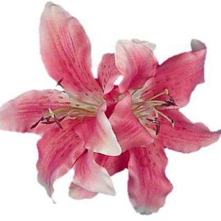 Fuchsia-Lily-453-flower-hair-alligator-clip