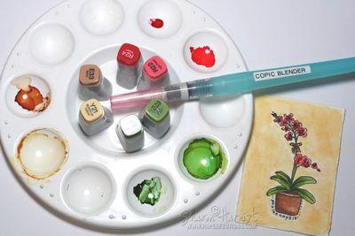 5-COWatercolorBdayCVIR2-SH