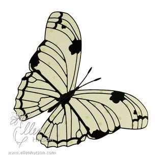 Netting Butterfly