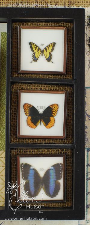 Butterflies 4