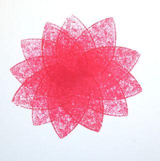 Dew-drops-petals-full-flowe
