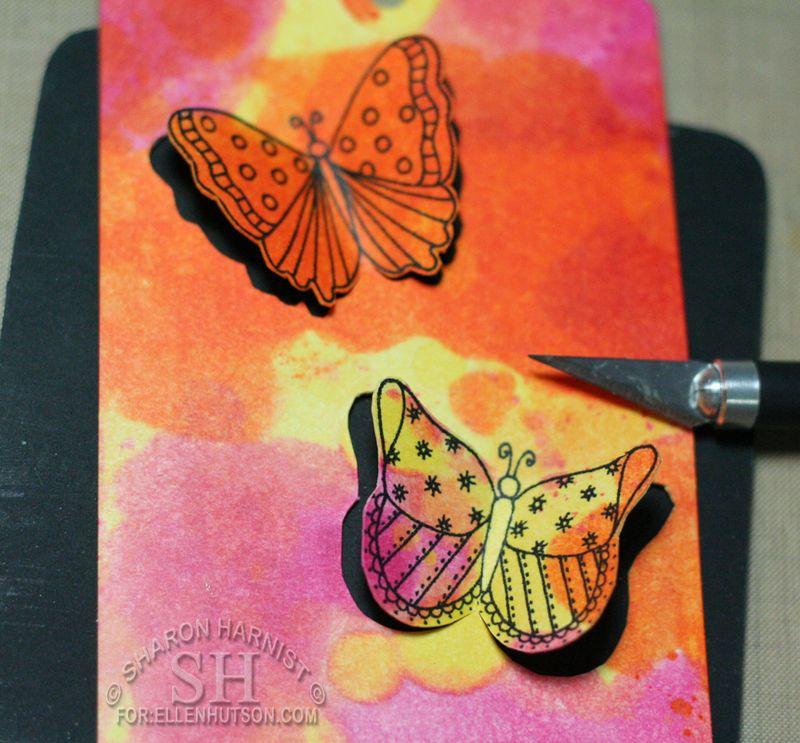 5-ButterflyTagCO5-SH