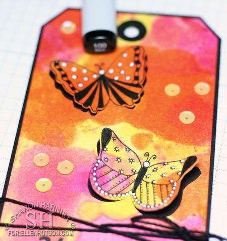 5-ButterflyTagCO8-SH