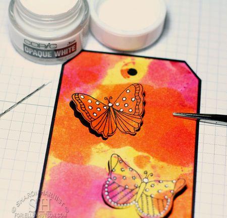 5-ButterflyTagCO6-SH