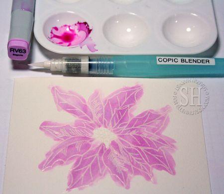 12-PoinsettiaScrap-CO1-SH