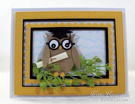 KC Owl 2
