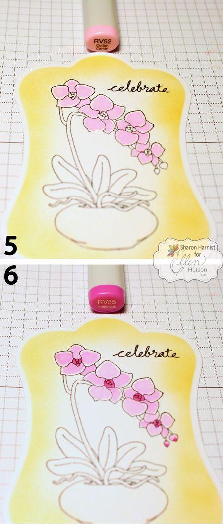5-OrchidCelebrate-SH