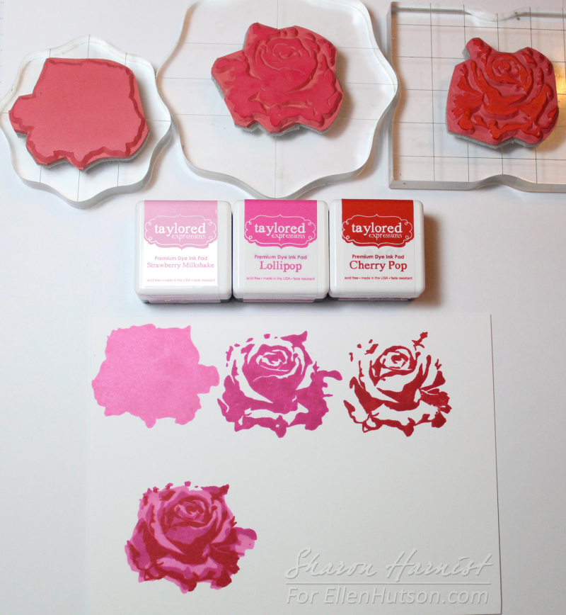 1-20 SharonTE Ink Cubes-3-SH