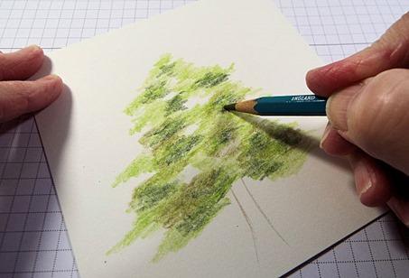 3 Olive Green