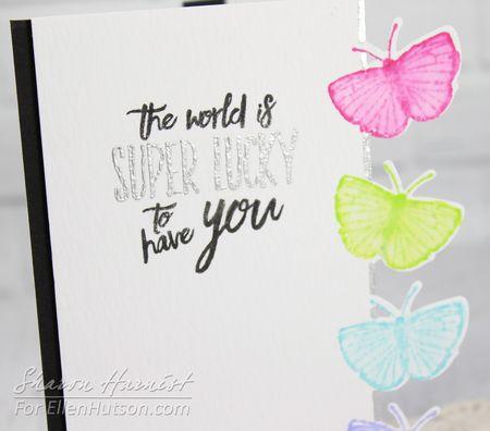 3-ButterflyBorderCU-SH