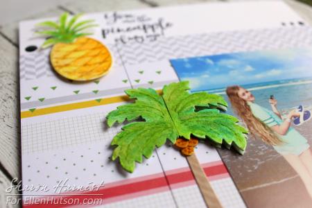 8-19 PineappleSBPgCU2B-SH