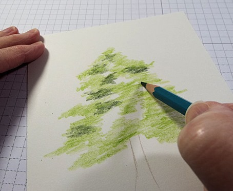 2 Cedar Green