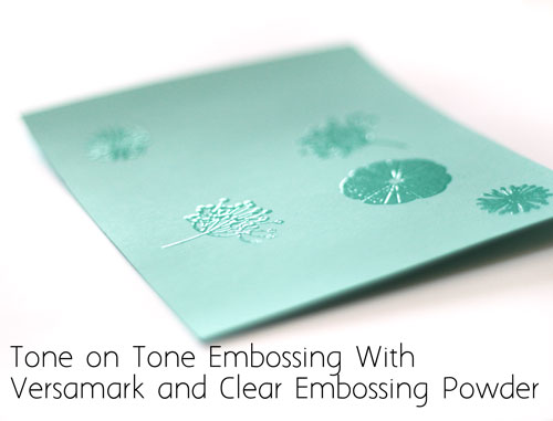 Clear-embossing-image