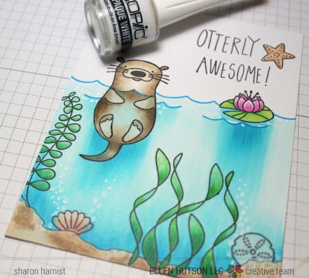 6-2 OtterUnderwater-8-SH