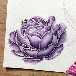 EH purple peony step 2