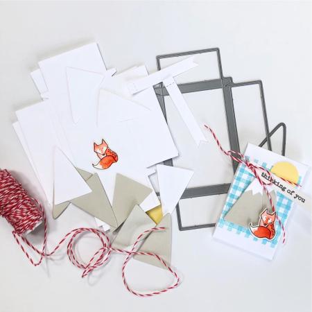 NICU Sbux gift card pkg